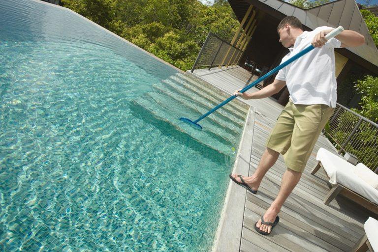 best swimming pool brush