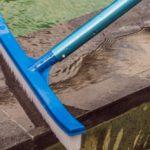 Best Pool Brush 2021: Reviews & Buying Guide