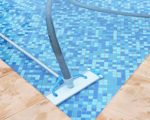 pool hand vacuum
